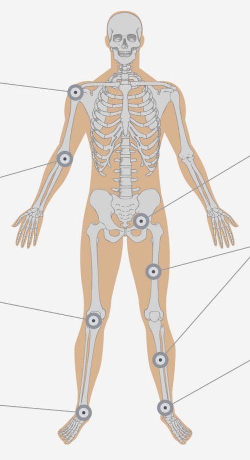 PRP: alivia el dolor y regenera el sistema músculo - esquelético