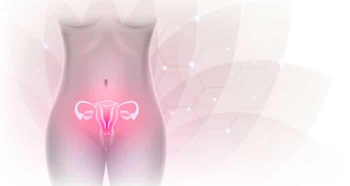 prolapsos genitales Belladona movil Prolapsos genitales
